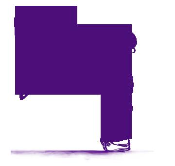 Identitate vizuala